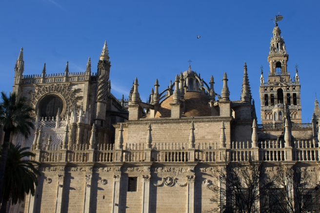 CATEDRAL11